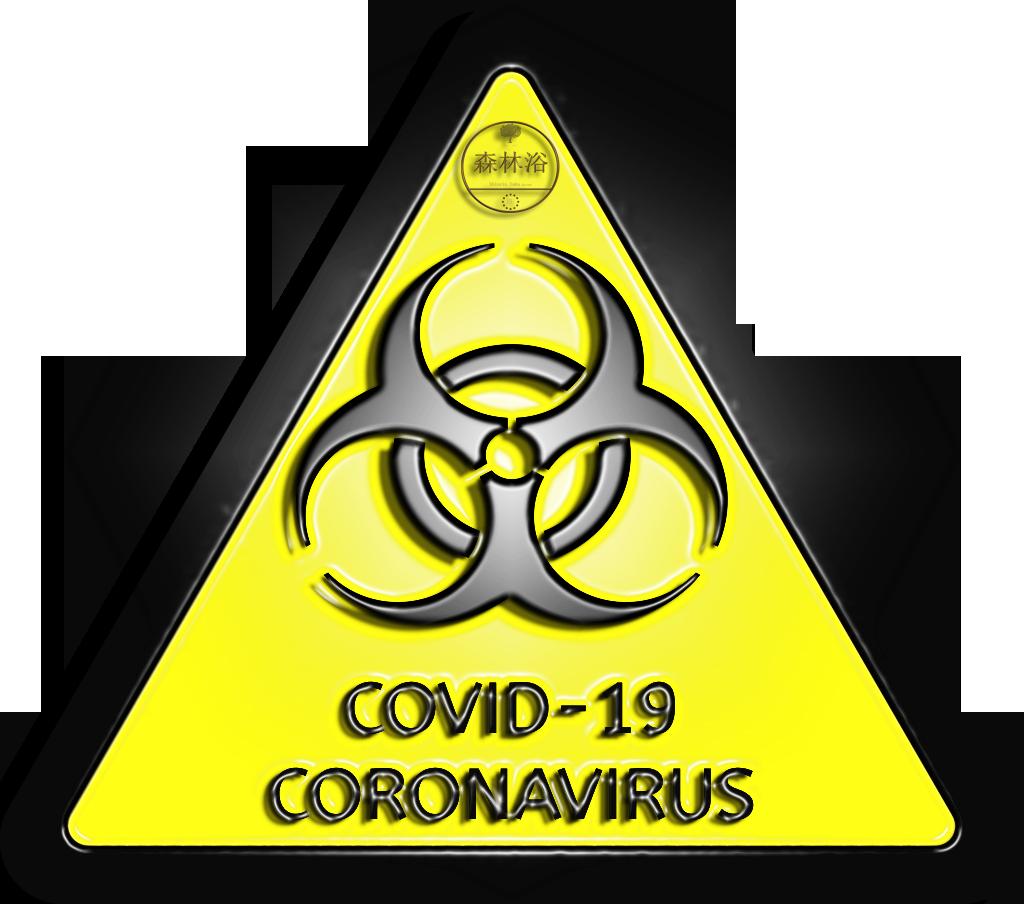 shinrin yoku Baño de Bosque COVID19 Coronavirus