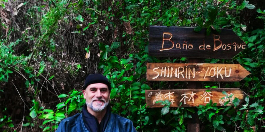 Pionero shinrin yoku baños de bosque , 森林浴,forestherapy,forestbathing,naturetherapy,banydebosc,terapiadebosque,Bain de forêt, лесная баня,Bagno nella foresta ,Banho na floresta,Waldbad ,Skogsbad,Metsäkylpy,삼림욕 ,phytoncide